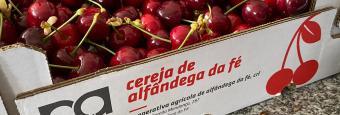 Mercado da Cereja e produtos locais em Alfândega da Fé